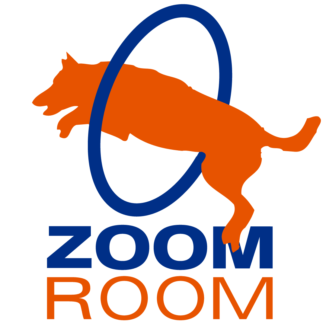 Zoom Room Franchise