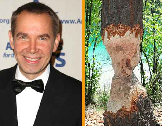 Thought to be a portrait of artist Jeff Koons