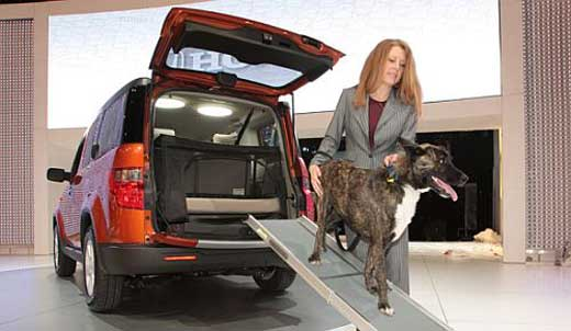 Dog-Friendly Car: The New Honda Element