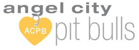 Angel City Pits