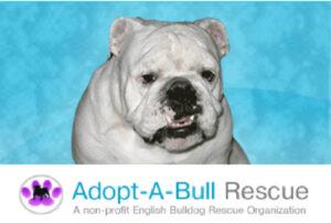 Bull Rescue