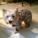 Fiona in pajamas