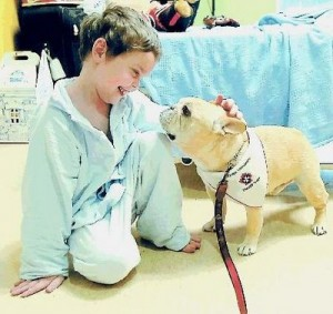 Benefits of Therapy Dogs