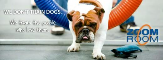 Foster City Dog Training