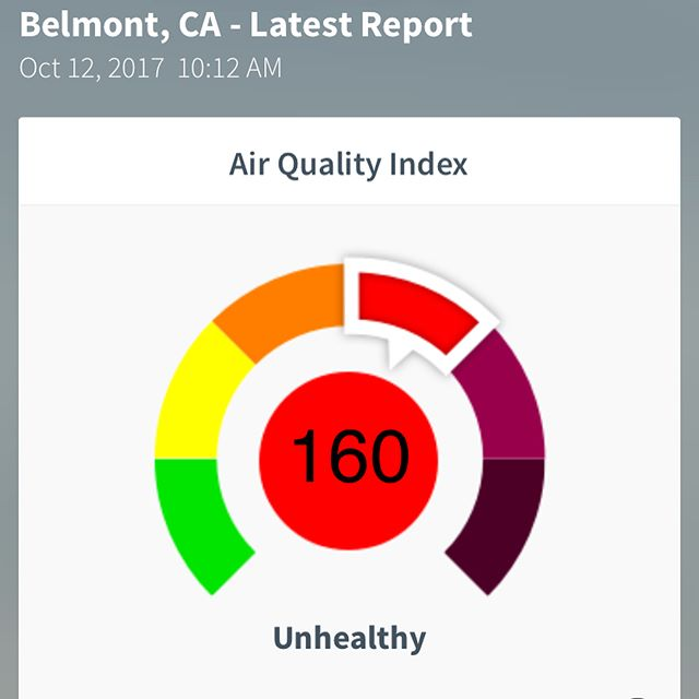 ‼️‼️ Remember that due to the #northbayfires the air quality in the Bay Area is not good! Keep pets indoors as much as possible and