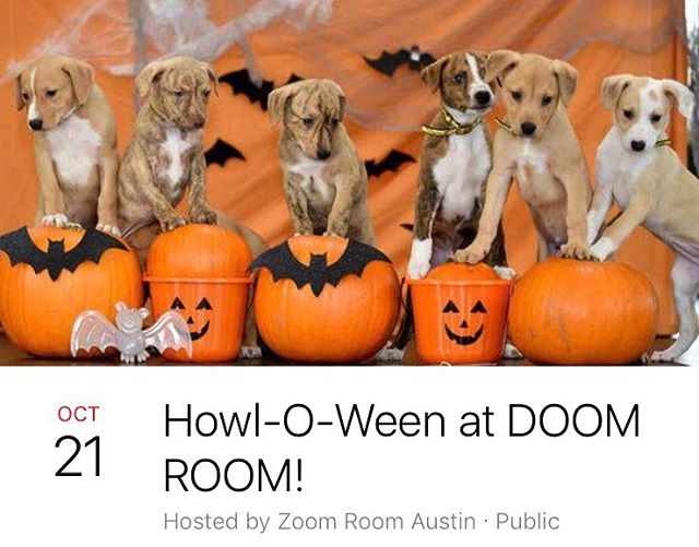 Hey Zoomers - mark your calendars! Next Saturday (10/21), we will be transforming into DOOM ROOM for our Howl-O-Ween party! . . Bobbing for