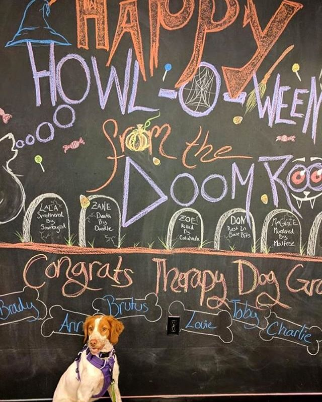 Moose wishes everyone a Happy Howl-o-ween from the DOOM ROOM! Come by to check out our spooky Halloween decorations!  #halloween #spooky #br