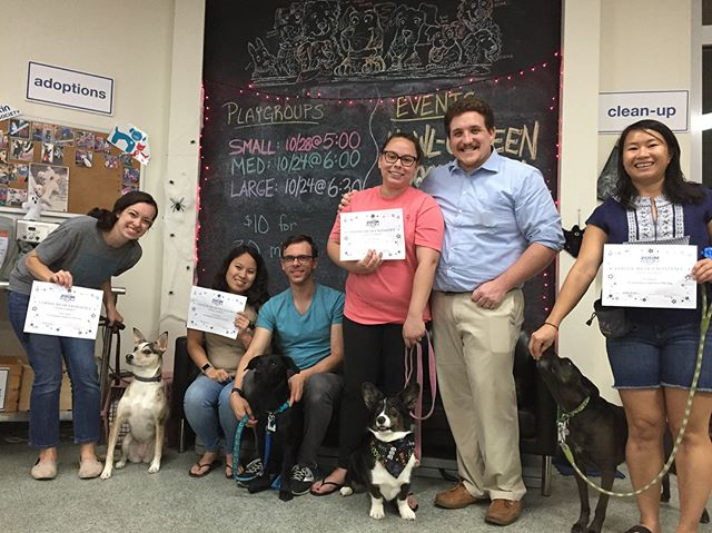 Congratulations to our Shy Dog workshop graduates! These pups worked on building their confidence over the last 6 weeks - which included con