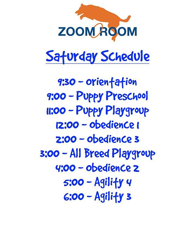 Today's schedule!  Sign up now!  #zoomroomvirginiabeach #dogsofvirginiabeach