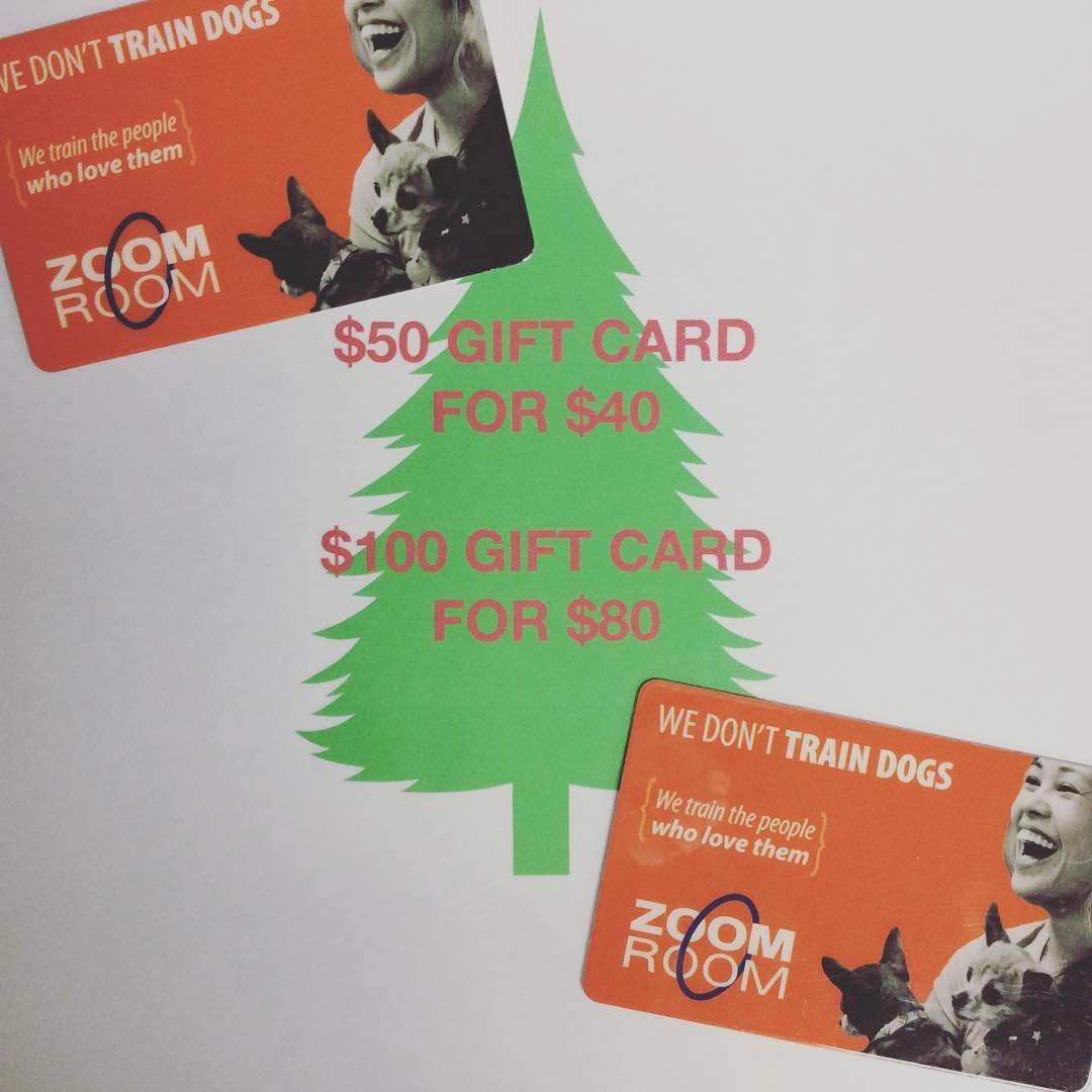 Give the gift of a well behaved dog! Perfect last minute gift.... discounted gift cards!