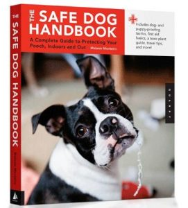 Is Your Dog Prepared for an Emergency?